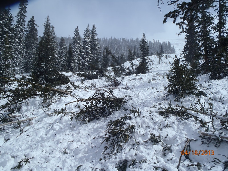 <b>Figure 4:</b> Vegetation damage from the avalanche. Image courtesy of Vail Mountain Rescue Group. (<a href=javascript:void(0); onClick=win=window.open('https://caic-production.imgix.net/1843dc3cwsvpbjgohgi8byelg5ce?ixlib=php-3.1.0&s=641b3409b656f1cac10923f7552caefa','caic_media','resizable=1,height=820,width=840,scrollbars=yes');win.focus();return false;>see full sized image</a>)