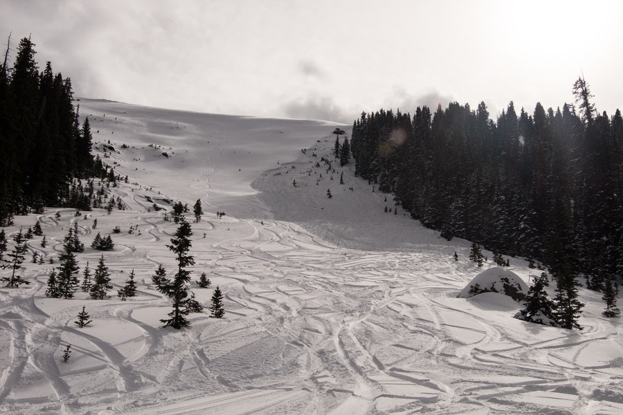 <b>Figure 4:</b> Looking uphill at the avalanche debris from the bottom of the Avalanche Bowl path. (<a href=javascript:void(0); onClick=win=window.open('https://caic-production.imgix.net/19rc5vafbhyq6r85gyaqsve5xyqk?ixlib=php-3.1.0&s=40cd782193cacdb72fd59f501fd20467','caic_media','resizable=1,height=820,width=840,scrollbars=yes');win.focus();return false;>see full sized image</a>)