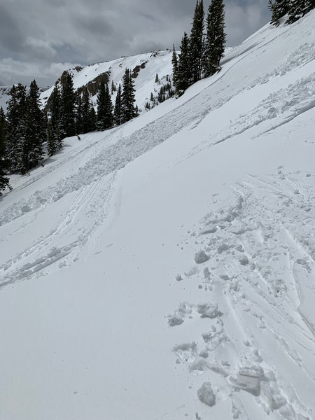 <b>Figure 3:</b> Debris crossing previous ski tracks. (<a href=javascript:void(0); onClick=win=window.open('https://caic-production.imgix.net/1ce11wsvvwz09y98xi9w3pnk2xef?ixlib=php-3.1.0&s=3c8d0e1333f8ac75fbb5c3a30e9b8775','caic_media','resizable=1,height=820,width=840,scrollbars=yes');win.focus();return false;>see full sized image</a>)