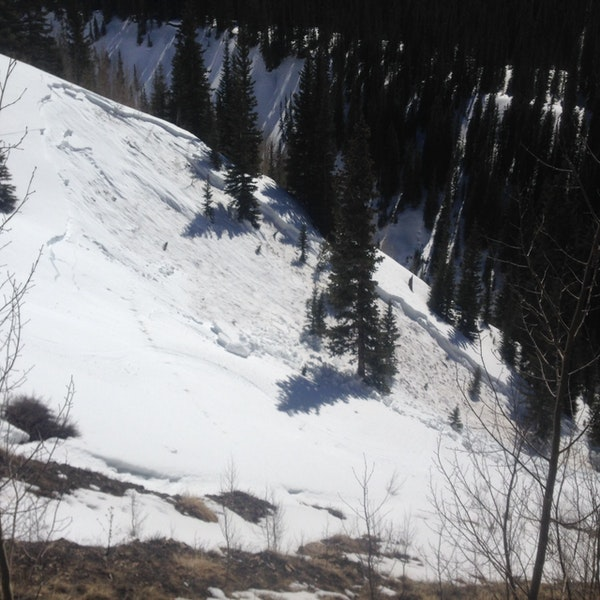 <b>Figure 2:</b> Looking across the gully to the start zone of the avalanche. (<a href=javascript:void(0); onClick=win=window.open('https://caic-production.imgix.net/2dfkgy6248gph3mcnvf1idtajimn?ixlib=php-3.1.0&s=341cb6982bb0a9695ba7ded614afcde9','caic_media','resizable=1,height=820,width=840,scrollbars=yes');win.focus();return false;>see full sized image</a>)
