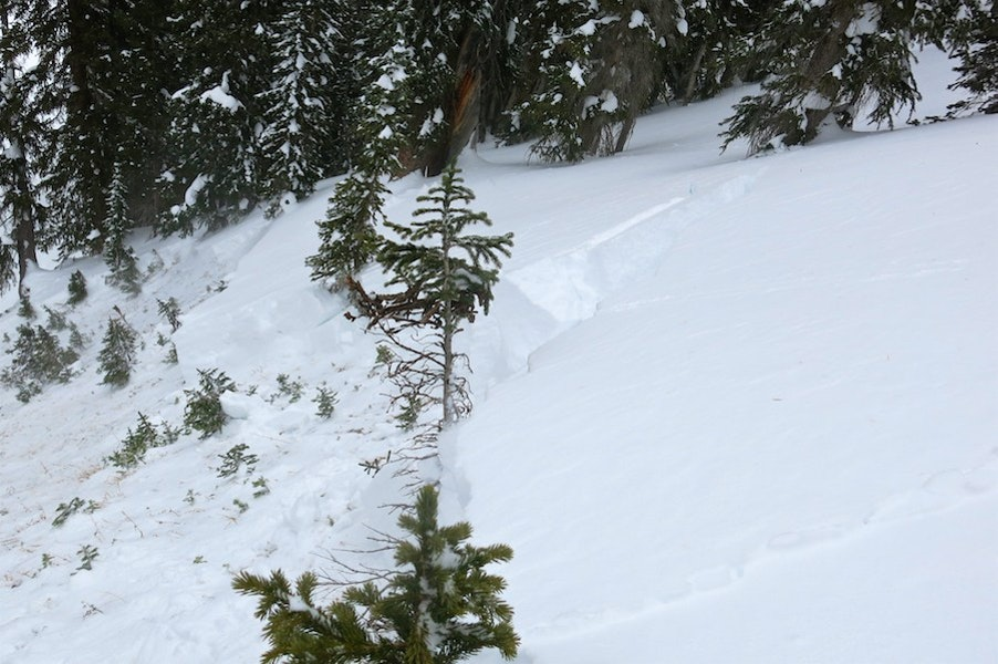 <b>Figure 1:</b> Looking across the crown of a snowmbile triggered avalanche on Mt Baldy near Crested Butte. 12/12/26 (<a href=javascript:void(0); onClick=win=window.open('https://caic-production.imgix.net/2nw97s53djg3oiqz329xhs32hmxn?ixlib=php-3.1.0&s=48643db801ac9fd54feacb49444a24f5','caic_media','resizable=1,height=820,width=840,scrollbars=yes');win.focus();return false;>see full sized image</a>)