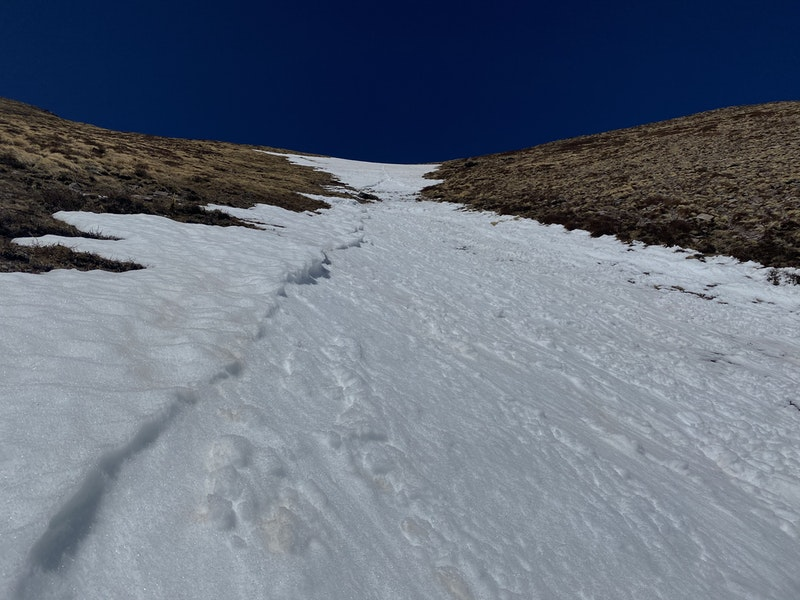 <b>Figure 5:</b> Looking up at the start zone of the avalanche. The wet loose-snow avalanche cut clean flanks during a portion of its descent. (<a href=javascript:void(0); onClick=win=window.open('https://caic-production.imgix.net/54dqsyc1py2nh99ids5fu1f6hofc?ixlib=php-3.1.0&s=c37af0488d5444debdc7eba429f843d7','caic_media','resizable=1,height=820,width=840,scrollbars=yes');win.focus();return false;>see full sized image</a>)