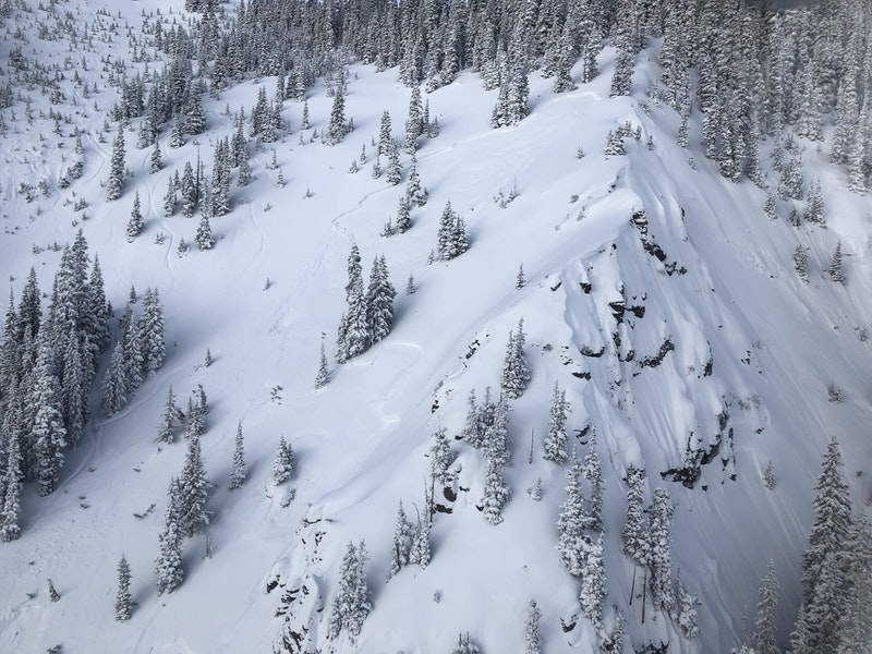 <b>Figure 4:</b> The avalanche crown in Temptation-East Face. Rider 1's track exits the avalanche and heads into the stand of trees on the left side of the image. (<a href=javascript:void(0); onClick=win=window.open('https://caic-production.imgix.net/5h0dqw9azdstcsm0yyoewj8yksno?ixlib=php-3.1.0&s=df6bb5179167921e85a8abdb914ec658','caic_media','resizable=1,height=820,width=840,scrollbars=yes');win.focus();return false;>see full sized image</a>)