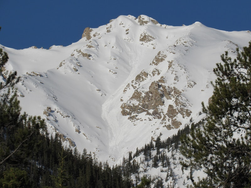 <b>Figure 2:</b> Loose Wet avalanches near La Plata Peak on a northeast-facing slope (<a href=javascript:void(0); onClick=win=window.open('https://caic-production.imgix.net/5s17bmrb8gosckxu8334yrpqjkn3?ixlib=php-3.1.0&s=1c2f31badddd063c7e64d185496060e9','caic_media','resizable=1,height=820,width=840,scrollbars=yes');win.focus();return false;>see full sized image</a>)