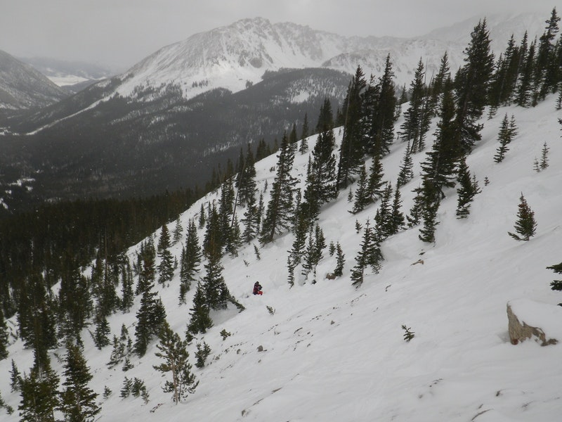 <b>Figure 10:</b> The eastern portion of the avalanche near the top of the path (<a href=javascript:void(0); onClick=win=window.open('https://caic-production.imgix.net/6039csolwy3gfjmw1vuuqdvlydzl?ixlib=php-3.1.0&s=575735607637b0b1ff3563e1fc7eb494','caic_media','resizable=1,height=820,width=840,scrollbars=yes');win.focus();return false;>see full sized image</a>)