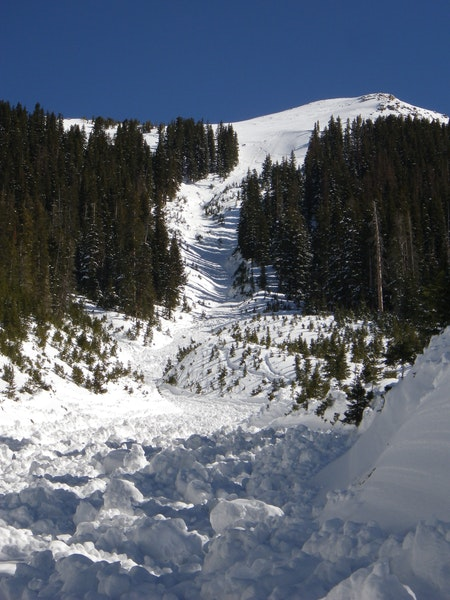 <b>Figure 10:</b> Looking up the gully at the path of the winding path of the avalanche debris. (<a href=javascript:void(0); onClick=win=window.open('https://caic-production.imgix.net/6qgbi1rxc5nappx75mi6f24eilme?ixlib=php-3.1.0&s=ab365375f1a96578eccdded5d2c1f7f8','caic_media','resizable=1,height=820,width=840,scrollbars=yes');win.focus();return false;>see full sized image</a>)