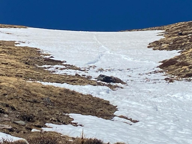 <b>Figure 1:</b> A hiker was attempting to glissade down this snow-filled gully when they triggered an avalanche that swept them 1000 ft down the slope. (<a href=javascript:void(0); onClick=win=window.open('https://caic-production.imgix.net/7xsv8im847t9hv9ufnmtbwnwot4h?ixlib=php-3.1.0&s=0be605cfbfe80166513b01e40671d4dd','caic_media','resizable=1,height=820,width=840,scrollbars=yes');win.focus();return false;>see full sized image</a>)
