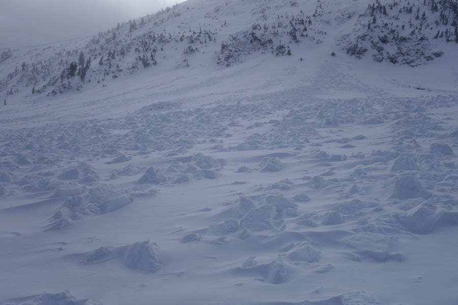 <b>Figure 3:</b> View of the South Diamond Peak avalanche which occurred on 12-24-2016. This is a view looking up from the toe of the debris. The avalanche ran on a well developed layer of depth hoar at the ground. (<a href=javascript:void(0); onClick=win=window.open('https://caic-production.imgix.net/81noguxjx0triylk5owdoinkhnqc?ixlib=php-3.1.0&s=ec0e20f857ed625b204fe8dc8f2f3df7','caic_media','resizable=1,height=820,width=840,scrollbars=yes');win.focus();return false;>see full sized image</a>)