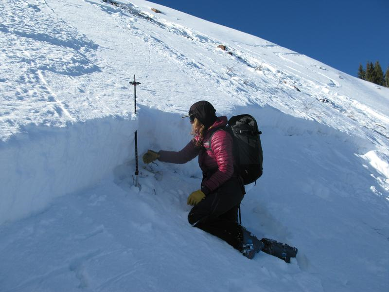 <b>Figure 12:</b> Photo showing crown depth lower on the slope where the avalanche had more uniformly broken in the facets on the top of the supportable melt-freeze crust. (<a href=javascript:void(0); onClick=win=window.open('https://caic-production.imgix.net/8f7bn2ncgqza4t9s2xn30molo748?ixlib=php-3.1.0&s=e9fe43f1c0eb68b65550a3bbc9366a31','caic_media','resizable=1,height=820,width=840,scrollbars=yes');win.focus();return false;>see full sized image</a>)