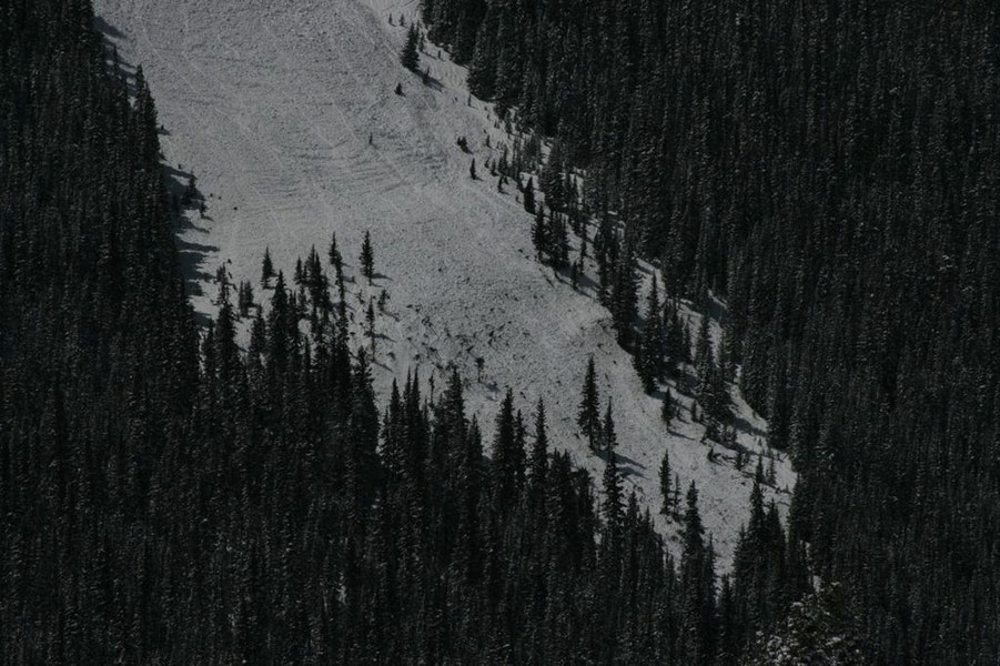 <b>Figure 18:</b> View of a previously vegetated area below a small bench in the lower portion of the avalanche path. Image courtesy of Dale Atkins (<a href=javascript:void(0); onClick=win=window.open('https://caic-production.imgix.net/8gbw0bncl8q3p31ta5l570yrl2v6?ixlib=php-3.1.0&s=d163557042b469755006bae066f2e505','caic_media','resizable=1,height=820,width=840,scrollbars=yes');win.focus();return false;>see full sized image</a>)