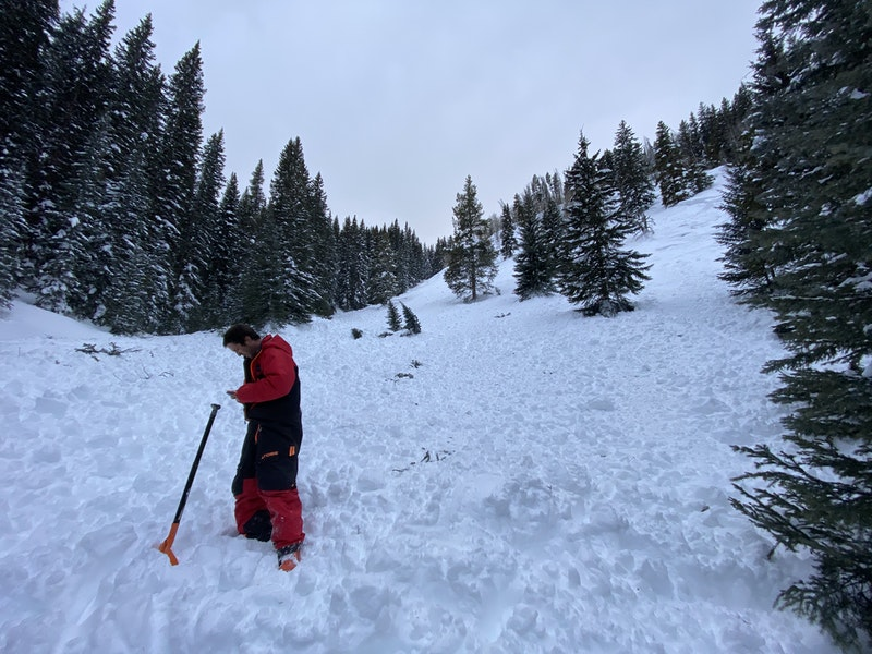 <b>Figure 4:</b> Looking up at the avalanche area. The riders came out of the trees into the bottom of the slope near this point. Image courtesy of Hunter Schleper. (<a href=javascript:void(0); onClick=win=window.open('https://caic-production.imgix.net/8umz2nr891hbtmjef87qapxx6ij8?ixlib=php-3.1.0&s=29913aaaebb29e4ea85be9654456ca23','caic_media','resizable=1,height=820,width=840,scrollbars=yes');win.focus();return false;>see full sized image</a>)