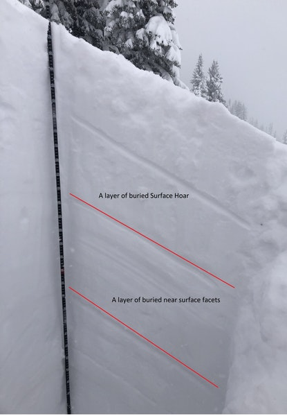 <b>Figure 6:</b> A snow profile observed near the top of the Marvin avalanche path on February 5. CAIC forecasters found two weak  layers in the upper 100 cm of the snowpack marked by the red lines in the image. (<a href=javascript:void(0); onClick=win=window.open('https://caic-production.imgix.net/c9zq1u5ar6pvk8s1hgi9yeglmb15?ixlib=php-3.1.0&s=bc5e27b22ba0aa448a084f9fa32970ad','caic_media','resizable=1,height=820,width=840,scrollbars=yes');win.focus();return false;>see full sized image</a>)