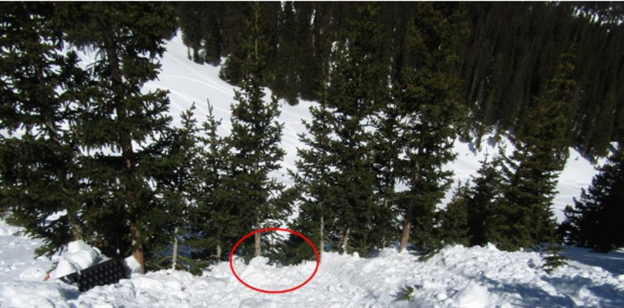 <b>Figure 5:</b> Looking down into the stand of trees. The track of Rider 2's snowmobile is visible on the left. The red circle indicates where the avalanche swept Rider 2 through the trees and ripped off his backpack. (<a href=javascript:void(0); onClick=win=window.open('https://caic-production.imgix.net/d9wwald2lz5ter9ycf2i5bnjiacf?ixlib=php-3.1.0&s=d0c956bfb89e05148d4b9a8d7f45224f','caic_media','resizable=1,height=820,width=840,scrollbars=yes');win.focus();return false;>see full sized image</a>)