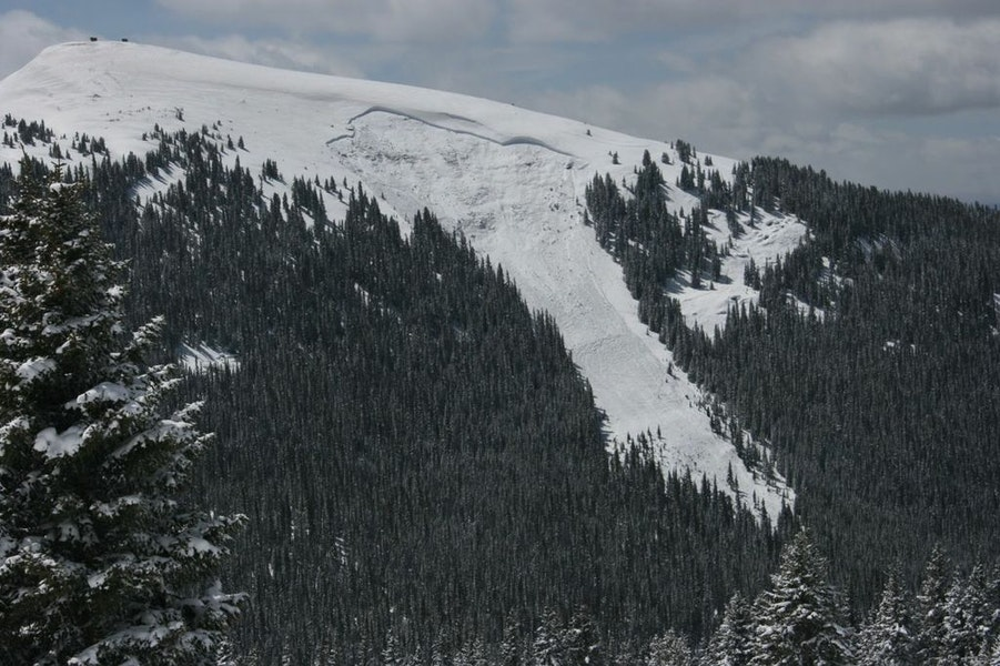 <b>Figure 1:</b> View of the avalanche on the north side of Ptarmigan Hill. Image courtesy of Dale Atkins (<a href=javascript:void(0); onClick=win=window.open('https://caic-production.imgix.net/dm6al9jv7zmglq0fcq255v51c8lw?ixlib=php-3.1.0&s=c8ab88095107eceec62db498d27195b1','caic_media','resizable=1,height=820,width=840,scrollbars=yes');win.focus();return false;>see full sized image</a>)