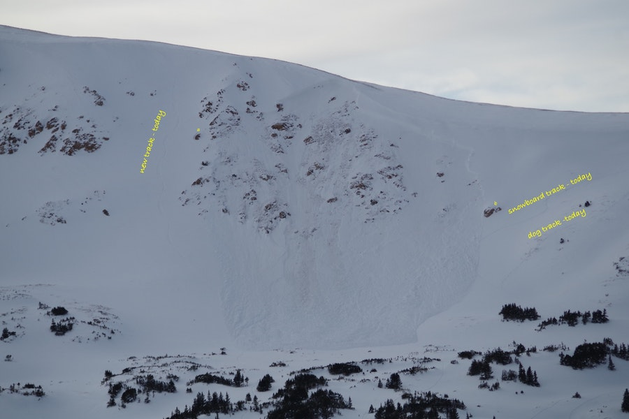 <b>Figure 5:</b> [Dale Atkins/Alpine Rescue Team photo and annotation] To the looker's right is snowboard track and a dog track, also made today. The avalanche overran a portion of the rider's track. (<a href=javascript:void(0); onClick=win=window.open('https://caic-production.imgix.net/f6nymwf0sq4gbiurpp5n9s9ujotx?ixlib=php-3.1.0&s=db46ecc6d9f5f82210f4e498e607c5f9','caic_media','resizable=1,height=820,width=840,scrollbars=yes');win.focus();return false;>see full sized image</a>)