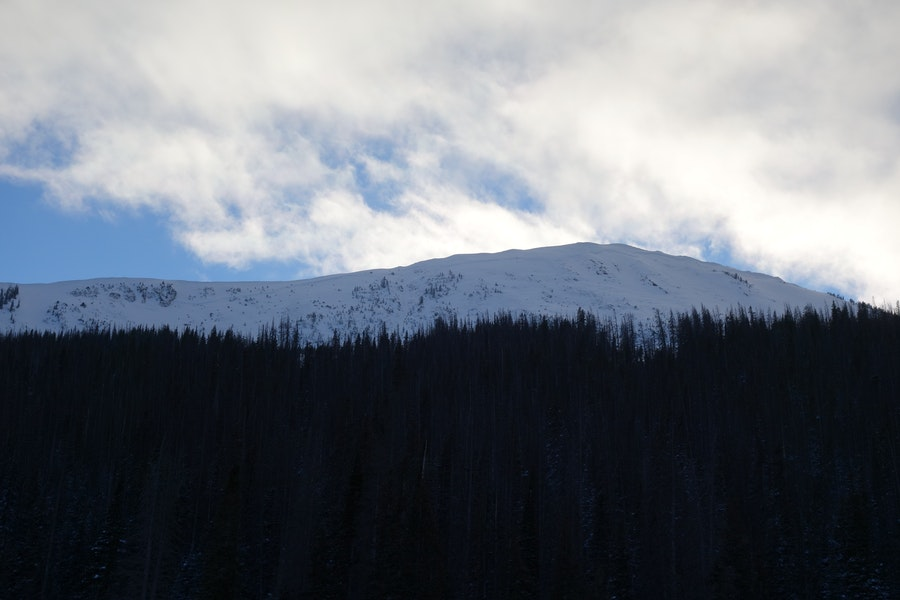 <b>Figure 2:</b> Looking up at South Diamond Peak, NE face, from the highway. The entire face slid on 12-24-2016. The avalanche propagated from the small island of trees on the right to the cliff band on the left. The avalanche was approximately 2,000 feet across with a vertical fall of approximately 900 feet. (<a href=javascript:void(0); onClick=win=window.open('https://caic-production.imgix.net/gflvuocwpuy7gw9ueo4feul20mg1?ixlib=php-3.1.0&s=6158f491ca118dfb19c588d973b0b1a6','caic_media','resizable=1,height=820,width=840,scrollbars=yes');win.focus();return false;>see full sized image</a>)