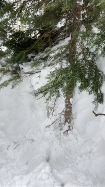 <b>Figure 1:</b> Burial location of the snowboarder who was completely buried in an avalanche in the East Vail Backcountry on February 13, 2021. His head was buried about a foot and a half deep. He was rescued by his partner using a transceiver. (<a href=javascript:void(0); onClick=win=window.open('https://caic-production.imgix.net/grecwmsn7xqm0pk4i6ak0bf98rda?ixlib=php-3.1.0&s=efc8c3f1d1a00e2fb39a9ed91c49c801','caic_media','resizable=1,height=820,width=840,scrollbars=yes');win.focus();return false;>see full sized image</a>)