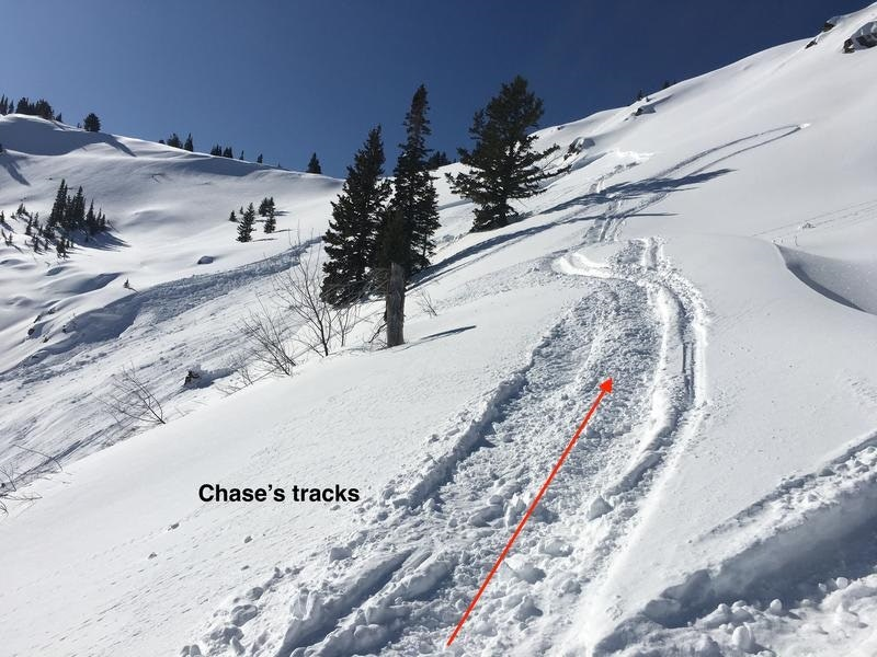 <b>Figure 3:</b> Photo of his tracks traversing above a few trees into the avalanche starting zone. (<a href=javascript:void(0); onClick=win=window.open('https://caic-production.imgix.net/hjdhu9guzvfadx39mfil319z25v9?ixlib=php-3.1.0&s=caeb4cc7b2c3549e54210d4056b1e0a3','caic_media','resizable=1,height=820,width=840,scrollbars=yes');win.focus();return false;>see full sized image</a>)
