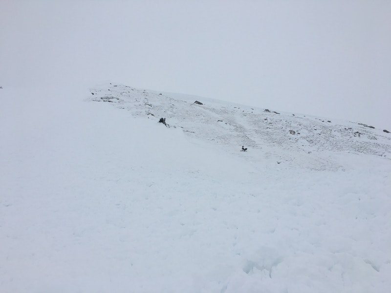 <b>Figure 4:</b> Looking up the avalanche from near Rider 1's burial location. Image courtesy GCSAR. (<a href=javascript:void(0); onClick=win=window.open('https://caic-production.imgix.net/i66nwge1euaxolnrhwkpllrx7hna?ixlib=php-3.1.0&s=e03bdb9c71545f77f093e1561054dbe5','caic_media','resizable=1,height=820,width=840,scrollbars=yes');win.focus();return false;>see full sized image</a>)