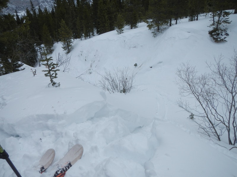 <b>Figure 10:</b> The view from where Skier 2 entered the gully. There is a shallow soft-slab avalanche on the opposite side of the gully. At the time of this report, we do not know if this avalanche released during the accident or rescue. (<a href=javascript:void(0); onClick=win=window.open('https://caic-production.imgix.net/ideg2cbizhk8m7tei69tox47ozl5?ixlib=php-3.1.0&s=fb7e0f71a00da038c0af2158f560a3e7','caic_media','resizable=1,height=820,width=840,scrollbars=yes');win.focus();return false;>see full sized image</a>)