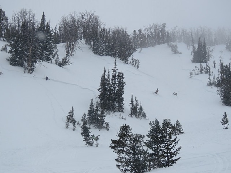 <b>Figure 3:</b> Photograph of the avalanche site taken on January 10. (<a href=javascript:void(0); onClick=win=window.open('https://caic-production.imgix.net/ijfix3j1559j4panz8nd19k82lmd?ixlib=php-3.1.0&s=a3d9ac68c568b5dfcfda6a068b6e57b5','caic_media','resizable=1,height=820,width=840,scrollbars=yes');win.focus();return false;>see full sized image</a>)