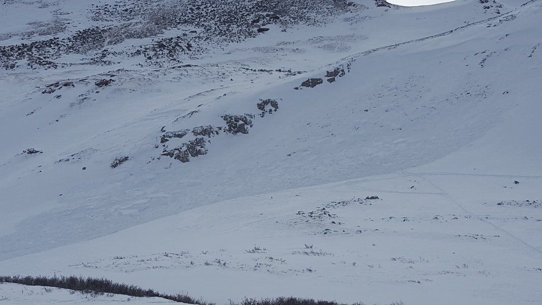 <b>Figure 3:</b> A backcountry skier triggered and was partially buried in this avalanche near Searle Pass in the Vail and Summit County Zone on November 28, 2019. (<a href=javascript:void(0); onClick=win=window.open('https://caic-production.imgix.net/iqiqlil2rb1z99ti7tomxxgt8h2t?ixlib=php-3.1.0&s=287fe9f72464f46aca4cb10ebfafca05','caic_media','resizable=1,height=820,width=840,scrollbars=yes');win.focus();return false;>see full sized image</a>)