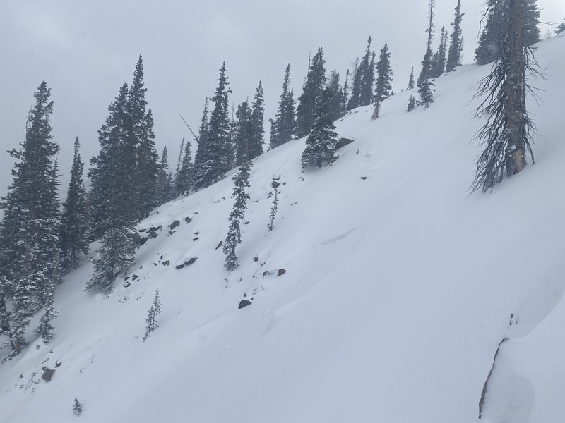 <b>Figure 4:</b> The start zone of the avalanche path. Portions of the crown face are visible. This image was taken on December 27, 2020, after seven inches of snow had fallen. (<a href=javascript:void(0); onClick=win=window.open('https://caic-production.imgix.net/j6i90wum2jy9l8djhnmkiqxlo38s?ixlib=php-3.1.0&s=7b8ae29cdf62d88325750f4f2fc65058','caic_media','resizable=1,height=820,width=840,scrollbars=yes');win.focus();return false;>see full sized image</a>)
