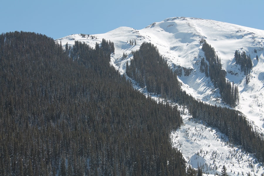 <b>Figure 1:</b> Looking to the south at the avalanche. The crown is visible near treeline in the upper left. There is a second avalanche, triggered sympathetically, to the viewer's left. Patroller 3 was buried where the narrow gully widens. (<a href=javascript:void(0); onClick=win=window.open('https://caic-production.imgix.net/jys0t60do1j1m55o44wx5cb5hby0?ixlib=php-3.1.0&s=f88f416941b3b39cbf1f684ddcdf1400','caic_media','resizable=1,height=820,width=840,scrollbars=yes');win.focus();return false;>see full sized image</a>)