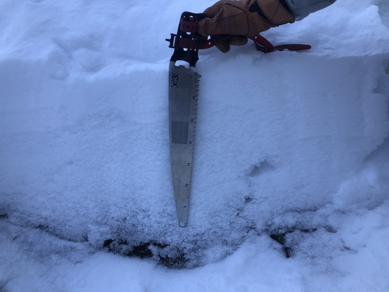 <b>Figure 9:</b> A cross section of the snowpack on the ramp below the ice climb. The snowpack ranged from 2 to 18 inches deep throughout the entire accident site. The snow was soft (Fist to Four Fingers on the Hand Hardness Index) and consisted primarily of facets with very little layering. (<a href=javascript:void(0); onClick=win=window.open('https://caic-production.imgix.net/k0yppbtov0x39ilvp9fxzjtdem7a?ixlib=php-3.1.0&s=20e381c3276cd022275513bb081fb56a','caic_media','resizable=1,height=820,width=840,scrollbars=yes');win.focus();return false;>see full sized image</a>)