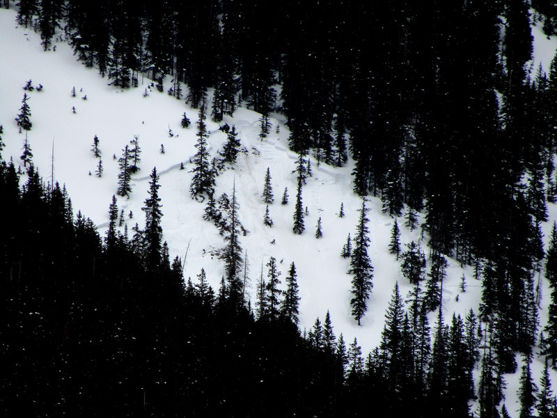<b>Figure 4:</b> Rider 1 triggered the avalanche on the sparsely treed slope below denser forest. The avalanche broke in old snow. (<a href=javascript:void(0); onClick=win=window.open('https://caic-production.imgix.net/l4z99s7ef291d16efanoknyygt0f?ixlib=php-3.1.0&s=6248f15bac23b8ec5b8eb56914e705d8','caic_media','resizable=1,height=820,width=840,scrollbars=yes');win.focus();return false;>see full sized image</a>)