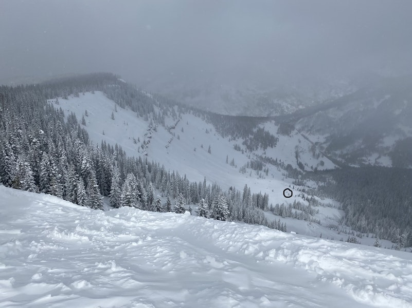 <b>Figure 3:</b> Looking across the slope that avalanched, known as Marvin's, from Red (elevation 11816). The skier was buried near the toe of the avalanche, in the area circled in black. Image courtesy Vail Ski Patrol (<a href=javascript:void(0); onClick=win=window.open('https://caic-production.imgix.net/lm9lktxz4ayu845h6qzm5exg2f4a?ixlib=php-3.1.0&s=b974900d651b2e7b891b277fa275ffd6','caic_media','resizable=1,height=820,width=840,scrollbars=yes');win.focus();return false;>see full sized image</a>)