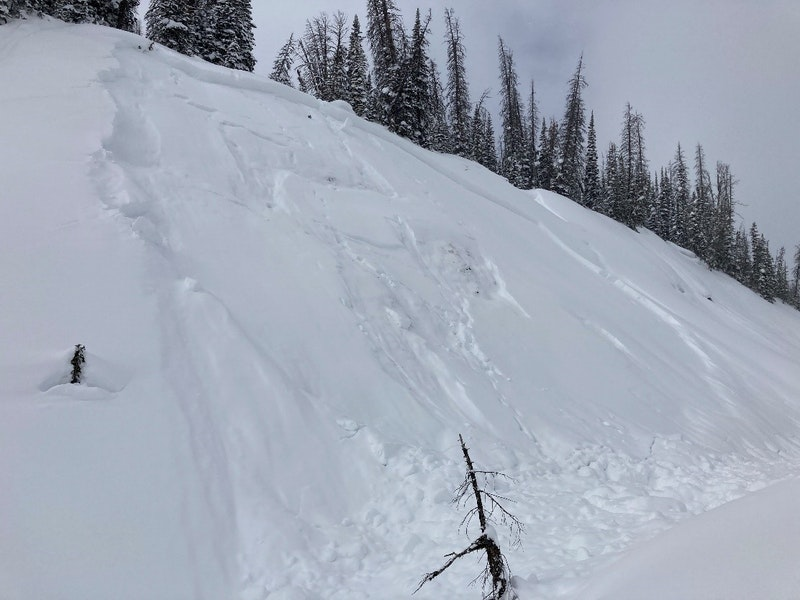<b>Figure 3:</b> Photograph taken on February 19 of the slab avalanche that caught and buried a snowboarder on the previous day. (<a href=javascript:void(0); onClick=win=window.open('https://caic-production.imgix.net/munyha3pya5imt18x68zim7rgyy7?ixlib=php-3.1.0&s=7918e37e4e1b3043c58210d307d1523f','caic_media','resizable=1,height=820,width=840,scrollbars=yes');win.focus();return false;>see full sized image</a>)