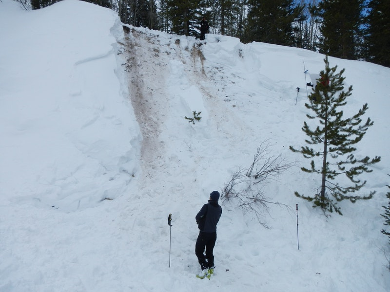 <b>Figure 2:</b> Looking up the avalanche path. CAIC forecaster is standing to the left of the burial site. (<a href=javascript:void(0); onClick=win=window.open('https://caic-production.imgix.net/mvwwk7fw5zijltbq1vo0pry2aln8?ixlib=php-3.1.0&s=70c4268f3c4f8d1fe2ae187c5f5e5bf2','caic_media','resizable=1,height=820,width=840,scrollbars=yes');win.focus();return false;>see full sized image</a>)