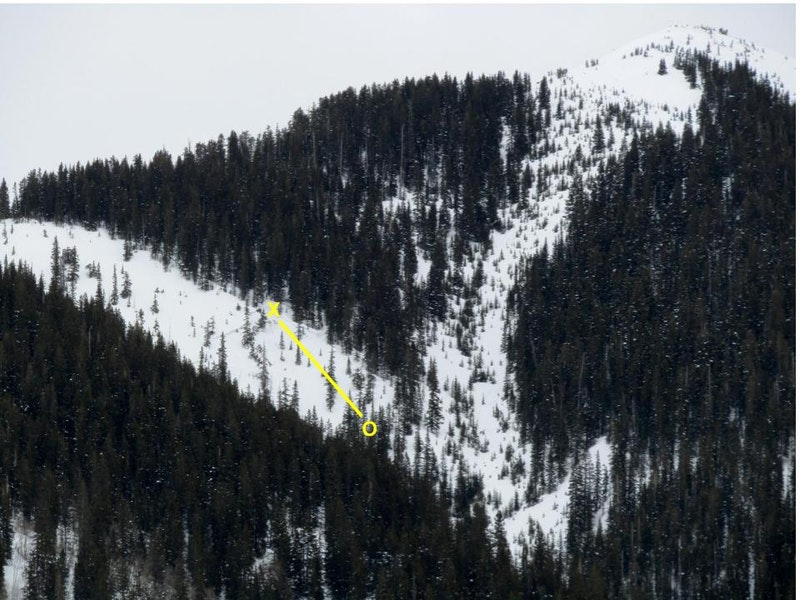 <b>Figure 2:</b> An annotated image of the avalanche with the approximate position Rider 1. The X marks his position at the start of the slope cut, O indicates the location where he was pinned against the tree. (<a href=javascript:void(0); onClick=win=window.open('https://caic-production.imgix.net/mxru1japbtv5lazs33oof9b7xkbf?ixlib=php-3.1.0&s=075ef9be4278eb53773e8b7c0d246e22','caic_media','resizable=1,height=820,width=840,scrollbars=yes');win.focus();return false;>see full sized image</a>)