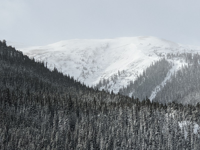 <b>Figure 1:</b> Crown of avalanche in the Ganley slide path, 10 Feb 2020. (<a href=javascript:void(0); onClick=win=window.open('https://caic-production.imgix.net/pdowe85tvbiv2yk8n233ies98bgv?ixlib=php-3.1.0&s=427f4287c14605bee4699283cc2dfa87','caic_media','resizable=1,height=820,width=840,scrollbars=yes');win.focus();return false;>see full sized image</a>)