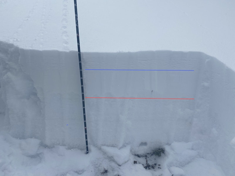 <b>Figure 7:</b> A snow profile observed near the top of Chimney Chute on December 27, 2020. The blue line marks the interface between the new snow that fell overnight between the day of the accident and the day of the investigation. The red line marks the top of the depth hoar layer, which was likely the initial failure plane of the fatal avalanche. (<a href=javascript:void(0); onClick=win=window.open('https://caic-production.imgix.net/qu573n11waj240hdjc5xz8ts5ntq?ixlib=php-3.1.0&s=ba4fbbd7b15edd8b4fee169e12248609','caic_media','resizable=1,height=820,width=840,scrollbars=yes');win.focus();return false;>see full sized image</a>)