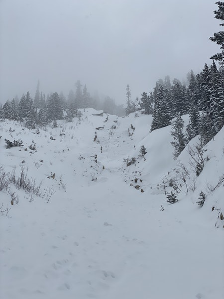 <b>Figure 7:</b> The avalanche carried Skier 1 over this cliff in the middle of the avalanche path. (<a href=javascript:void(0); onClick=win=window.open('https://caic-production.imgix.net/qzlhygd5mzh62lnoixycduzt5mbs?ixlib=php-3.1.0&s=aabee69f1f68d9693b2413400b52e4fc','caic_media','resizable=1,height=820,width=840,scrollbars=yes');win.focus();return false;>see full sized image</a>)