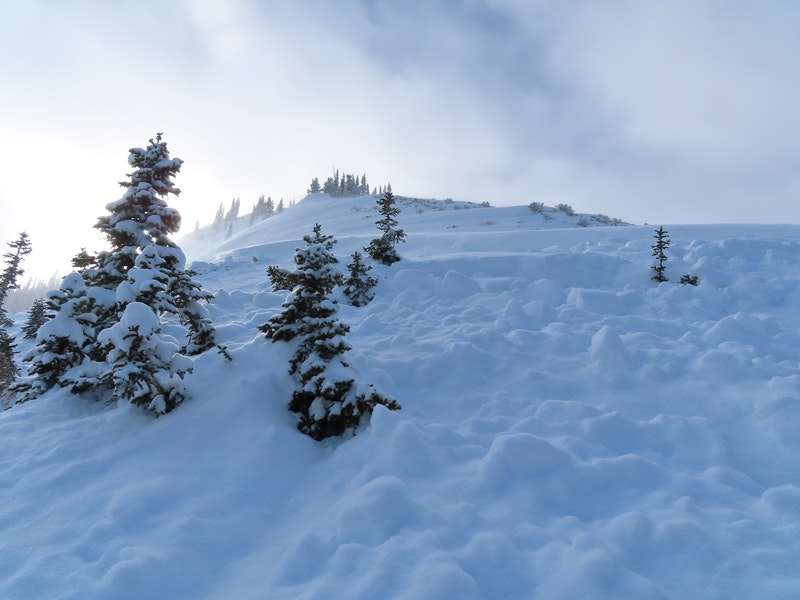 <b>Figure 6:</b> Looking up to the avalanche crown from the approximate location where Skier 1 was caught. (<a href=javascript:void(0); onClick=win=window.open('https://caic-production.imgix.net/rjsnmbg3h771eghnezyc1t3osyks?ixlib=php-3.1.0&s=88c5c9d322fc95c875d1f85f1669cf1a','caic_media','resizable=1,height=820,width=840,scrollbars=yes');win.focus();return false;>see full sized image</a>)