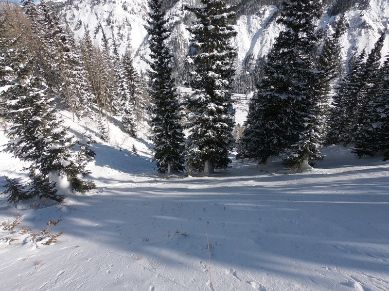 <b>Figure 7:</b> Looking down from the top of the avalanche into gully. (<a href=javascript:void(0); onClick=win=window.open('https://caic-production.imgix.net/rpgn1lqiifglm0v9w5biqtwn7r8r?ixlib=php-3.1.0&s=b280c7c0436b58aad469cad993ab448c','caic_media','resizable=1,height=820,width=840,scrollbars=yes');win.focus();return false;>see full sized image</a>)