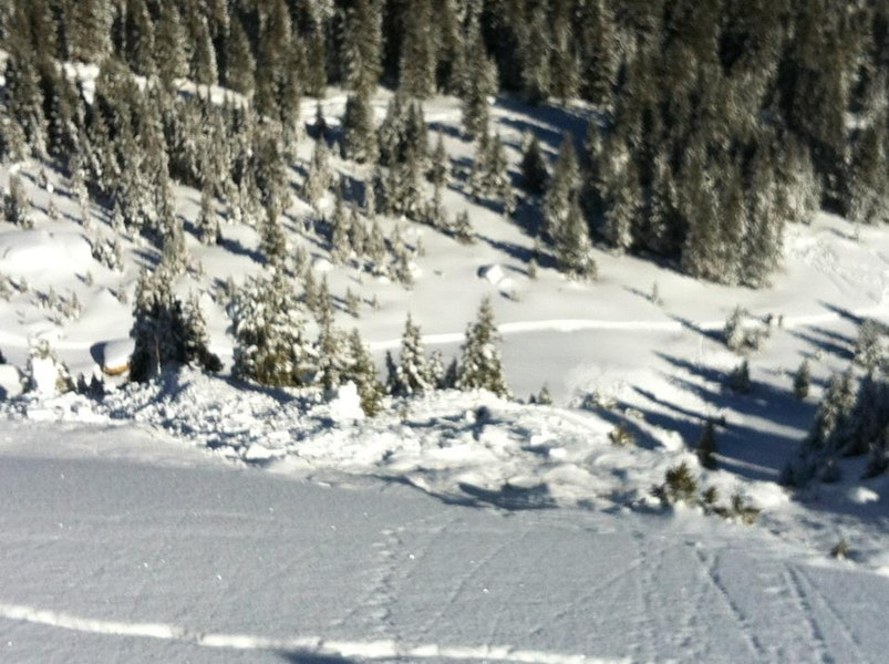 <b>Figure 2:</b> Looking down from just above the crown. Some debris piled up against the trees, while most of the avalanche spilled over the cliff. (<a href=javascript:void(0); onClick=win=window.open('https://caic-production.imgix.net/sag9p7c600vg91h6fskvcjfowha9?ixlib=php-3.1.0&s=5fd1e1a7d080b16c28c2b8328f1c8d39','caic_media','resizable=1,height=820,width=840,scrollbars=yes');win.focus();return false;>see full sized image</a>)
