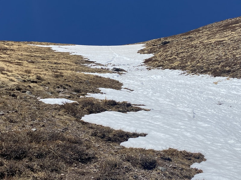 <b>Figure 4:</b> Looking up at the start zone of the avalanche. The wet loose-snow avalanche started as Climber 1 glissaded down the snow slope, and then widened as it entrained more snow. (<a href=javascript:void(0); onClick=win=window.open('https://caic-production.imgix.net/sr9w8u3b76bpcs48918lnz01bha4?ixlib=php-3.1.0&s=ce682538ef4a735d7cce42c424795d96','caic_media','resizable=1,height=820,width=840,scrollbars=yes');win.focus();return false;>see full sized image</a>)