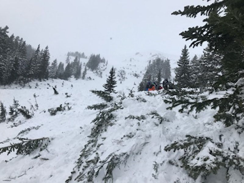 <b>Figure 1:</b> Looking up that avalanche path. (<a href=javascript:void(0); onClick=win=window.open('https://caic-production.imgix.net/svyf6ugrzn29csrgca4pnoumnloa?ixlib=php-3.1.0&s=2a602af6169c78c9a5f7461877b243ab','caic_media','resizable=1,height=820,width=840,scrollbars=yes');win.focus();return false;>see full sized image</a>)