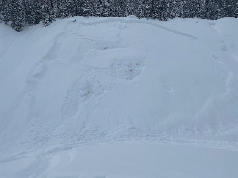 <b>Figure 5:</b> Photograph taken on February 19 of the slab avalanche that buried a snowboarder on the previous day (<a href=javascript:void(0); onClick=win=window.open('https://caic-production.imgix.net/tdvhrna1w419z7825caj399oigr1?ixlib=php-3.1.0&s=12f05540bb9ee1ef376859c20233dc80','caic_media','resizable=1,height=820,width=840,scrollbars=yes');win.focus();return false;>see full sized image</a>)