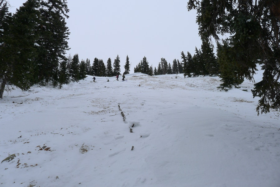 <b>Figure 11:</b> Looking up the track of the avalanche path towards crown. (<a href=javascript:void(0); onClick=win=window.open('https://caic-production.imgix.net/tkhf1n887i1so2c1wa2y44boh24b?ixlib=php-3.1.0&s=1854bf1ce9b58ca4b98af7c2d684c977','caic_media','resizable=1,height=820,width=840,scrollbars=yes');win.focus();return false;>see full sized image</a>)