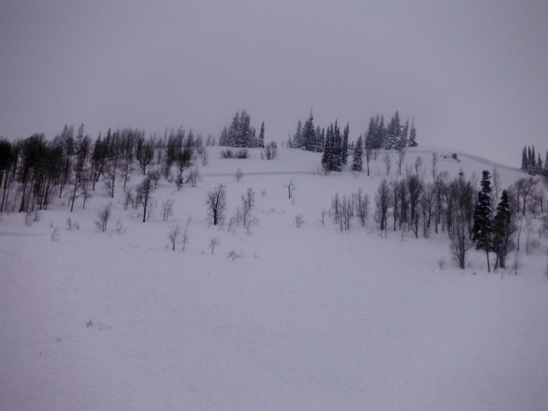 <b>Figure 2:</b> The avalanche crown, 2/10. The avalanche was about 600 feet wide, 3 feet deep, and ran 750 vertical feet. CBAC photo. (<a href=javascript:void(0); onClick=win=window.open('https://caic-production.imgix.net/tosjju5024ypltnfzi8ficrryt1m?ixlib=php-3.1.0&s=0985634e2576f31d7a89e3f859e01129','caic_media','resizable=1,height=820,width=840,scrollbars=yes');win.focus();return false;>see full sized image</a>)