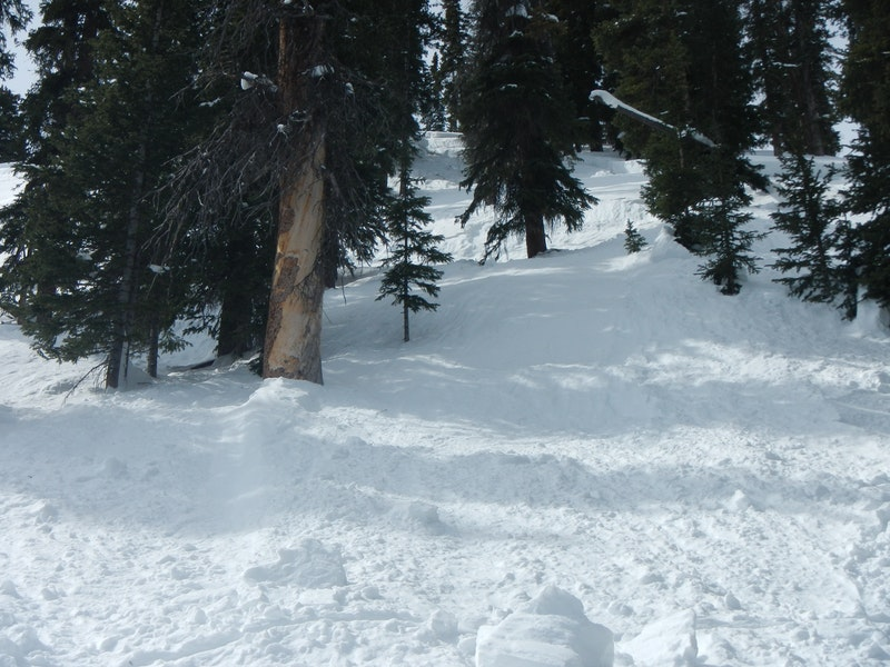<b>Figure 5:</b> Looking up the avalanche toward the left flank. Rider 1 triggered the avalanche on the sparsely treed slope next to a larger and steeper open area. (<a href=javascript:void(0); onClick=win=window.open('https://caic-production.imgix.net/tqa0hs19noeu05iwrmpnwr0c9aqm?ixlib=php-3.1.0&s=e48b66cfb5d282716f40c50723c32df9','caic_media','resizable=1,height=820,width=840,scrollbars=yes');win.focus();return false;>see full sized image</a>)