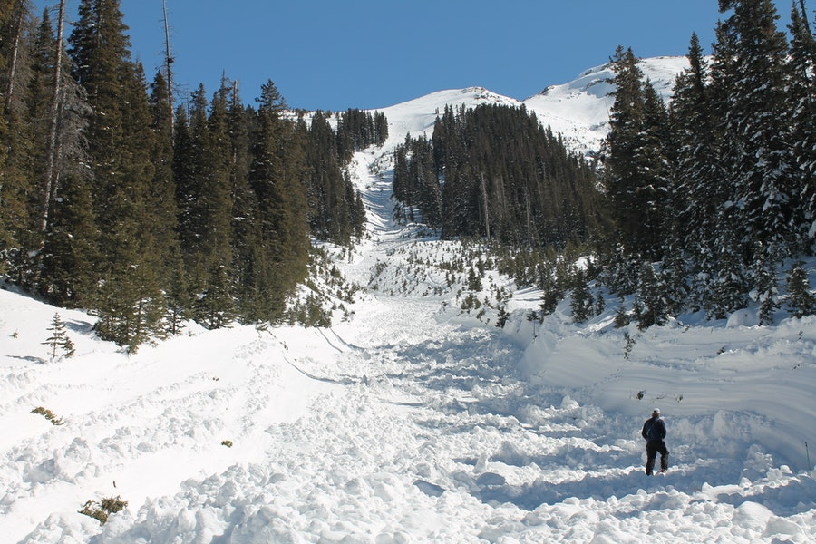 <b>Figure 2:</b> Looking up the gully the avalanche ran through. Deep sidewalls were gouged by the flowing debris. (<a href=javascript:void(0); onClick=win=window.open('https://caic-production.imgix.net/trigmosumwaa4d7snhwgx8nmk9gr?ixlib=php-3.1.0&s=be26d182e478f2f45e1f46f7fcb764f0','caic_media','resizable=1,height=820,width=840,scrollbars=yes');win.focus();return false;>see full sized image</a>)