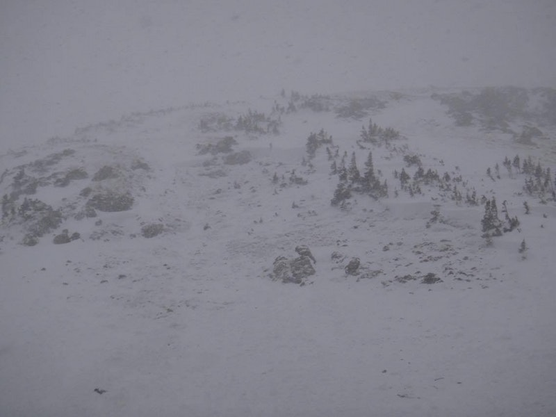 <b>Figure 1:</b> Three skiers triggered this avalanche on a north-facing aspect in Butler Gulch in the Front Range zone on 12-10-2016. Two skiers were partially buried. The third was completely buried. The partially buried skiers were able to self rescue and the group was able to excavate the fully buried individual. Nobody was injured. (CAIC Notes: From the photo the avalanche would be classified as  HS-ASu-R2-D1.5-G 100 feet wide by 150 feet long.) (<a href=javascript:void(0); onClick=win=window.open('https://caic-production.imgix.net/tsydnu0cykiddeibor33dhoy68p0?ixlib=php-3.1.0&s=9227bad3714286d1376f8706b61de484','caic_media','resizable=1,height=820,width=840,scrollbars=yes');win.focus();return false;>see full sized image</a>)