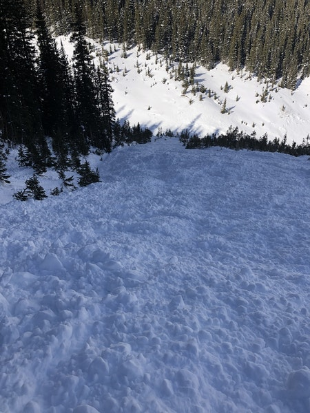 <b>Figure 8:</b> The avalanche ran 1600 vertical feet to the creek bottom. You can see disturbed snow from the powder blast on the far side of the creek. (<a href=javascript:void(0); onClick=win=window.open('https://caic-production.imgix.net/u2jupbyxrotc3lfvy80tgv1s7ryz?ixlib=php-3.1.0&s=8ecd8c6c82615fd4732b830b5fe2aef5','caic_media','resizable=1,height=820,width=840,scrollbars=yes');win.focus();return false;>see full sized image</a>)