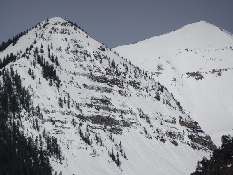 <b>Figure 5:</b> Numerous Wet Loose and a small Wet Slab near treeline on northeast aspect of Peeler's sub peak. (<a href=javascript:void(0); onClick=win=window.open('https://caic-production.imgix.net/uguherowktfoqa0fwpzn0bvp22wl?ixlib=php-3.1.0&s=7c480135f72b2274f606656e4c28c195','caic_media','resizable=1,height=820,width=840,scrollbars=yes');win.focus();return false;>see full sized image</a>)